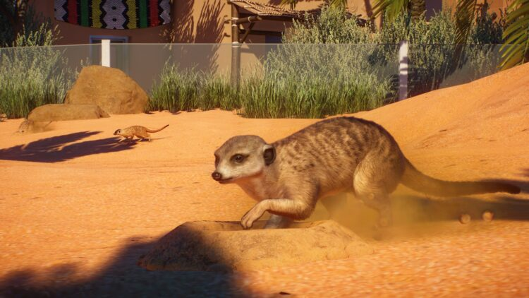 Planet Zoo Africa Pack Launch