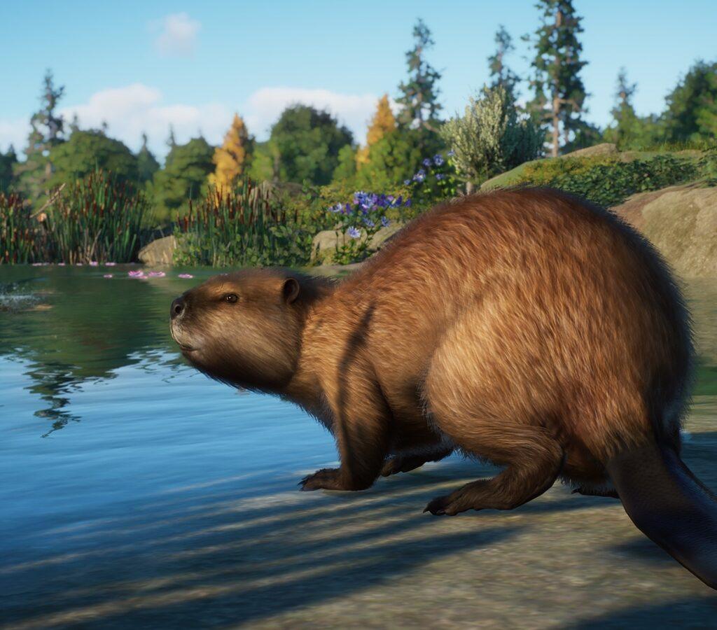 Planet Zoo North America Pack Screenshot 2