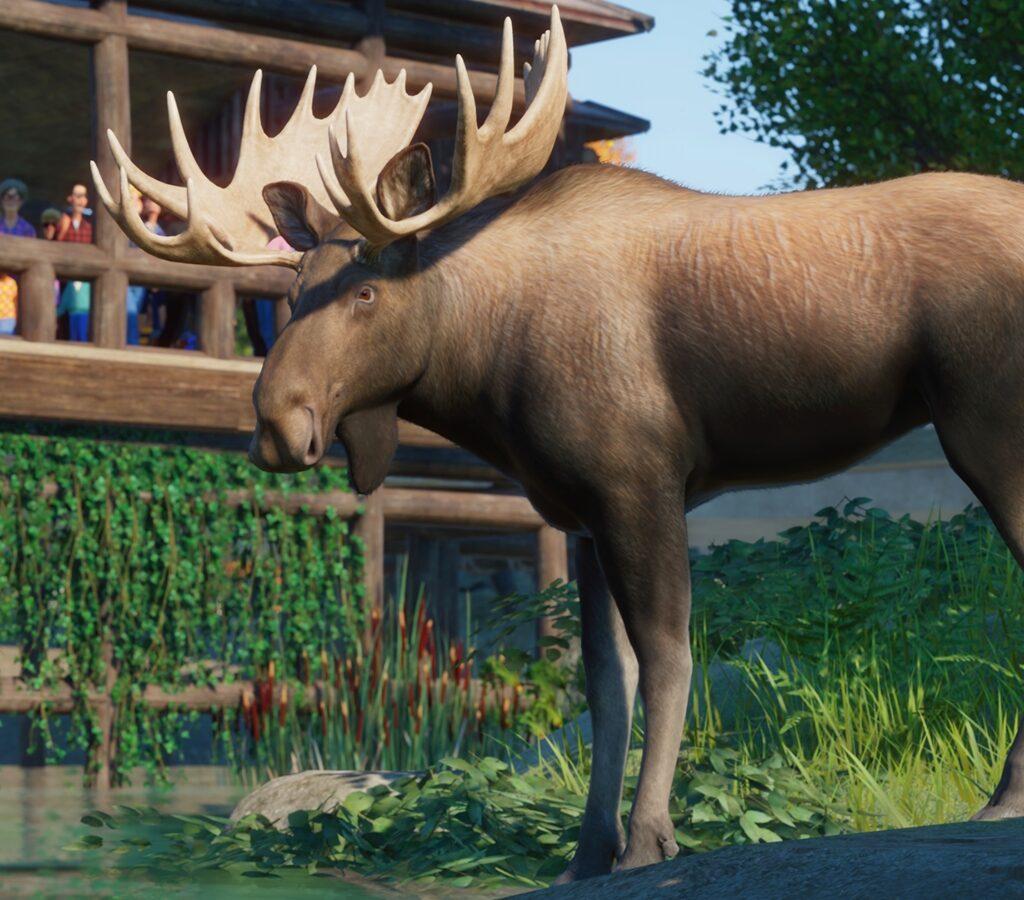 Planet Zoo North America Pack Screenshot 3
